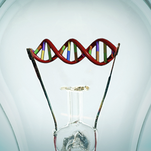 lightbulb-dna-photo