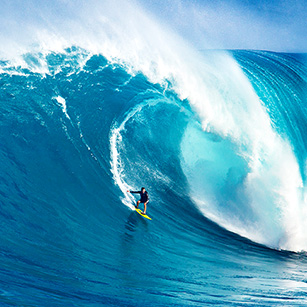 surfing-healthcare-disruption-tsunami-blue-latitude-health